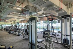 Blue Condo Miami Gym